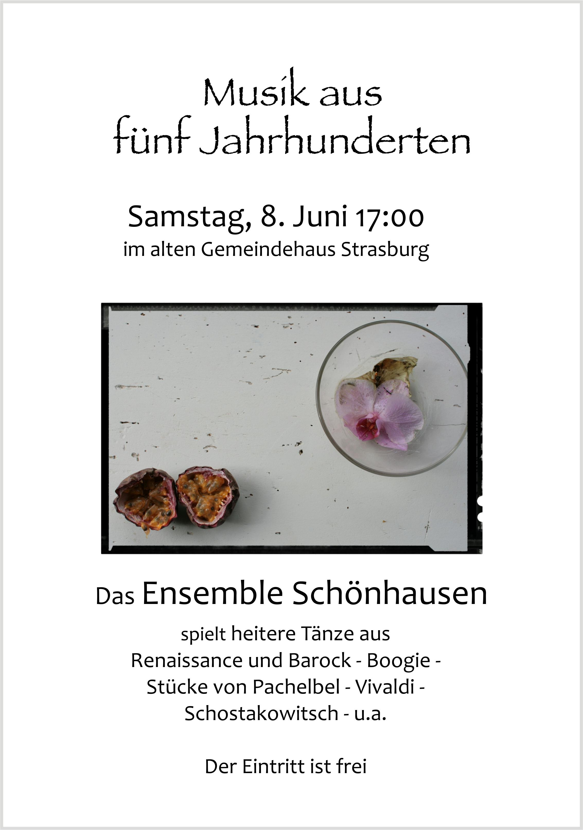 Das Ensemble Schönhausen